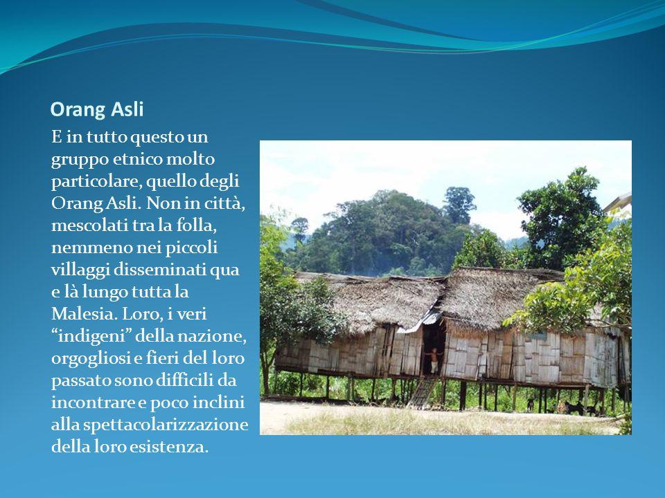 Orang Asli E in tutto questo un gruppo etnico molto particolare, quello degli Orang Asli. Non in città, mescolati tra la folla, nemmeno nei piccoli vi