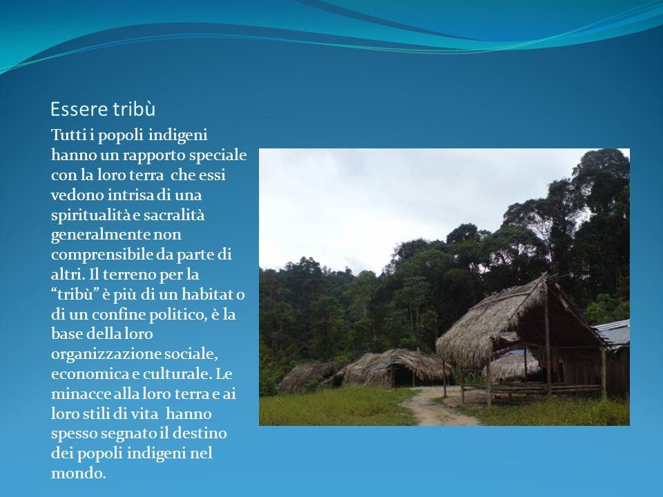 Essere tribù Tutti i popoli indigeni hanno un rapporto speciale con la loro terra che essi vedono intrisa di una spiritualità e sacralità generalmente