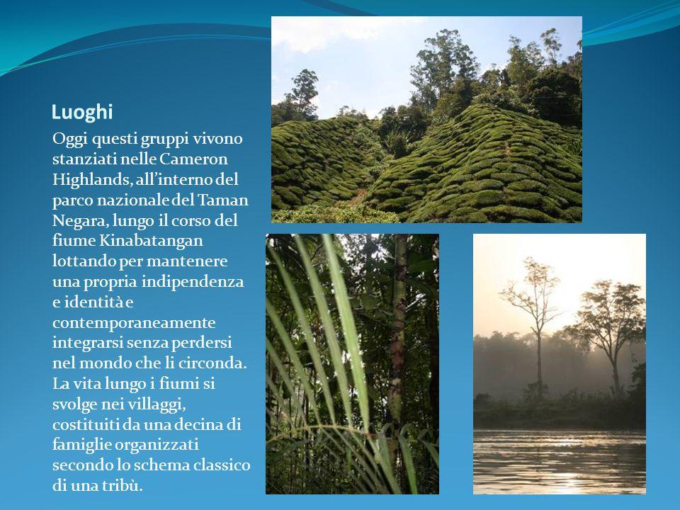 Luoghi Oggi questi gruppi vivono stanziati nelle Cameron Highlands, allinterno del parco nazionale del Taman Negara, lungo il corso del fiume Kinabata