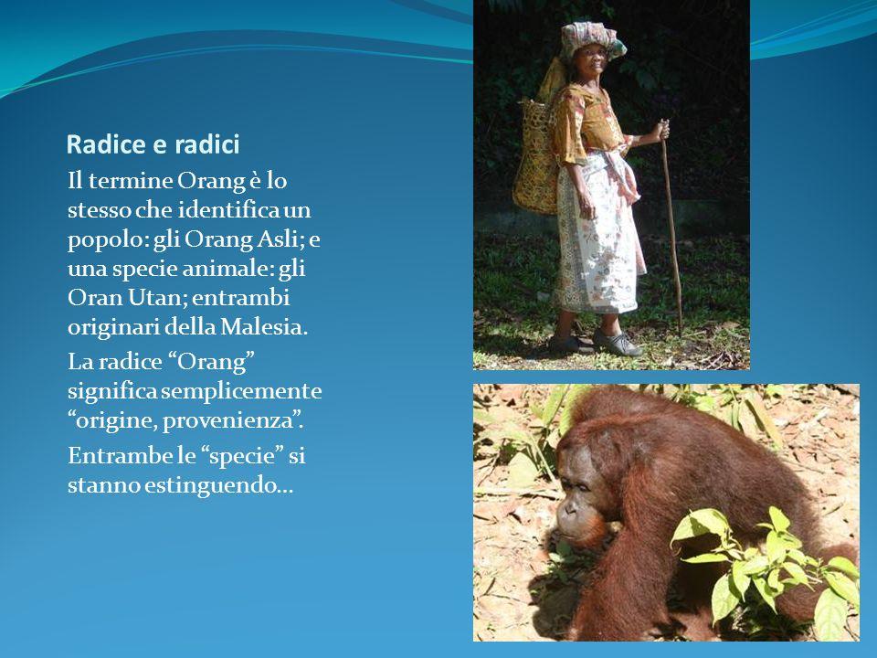 Radice e radici Il termine Orang è lo stesso che identifica un popolo: gli Orang Asli; e una specie animale: gli Oran Utan; entrambi originari della M