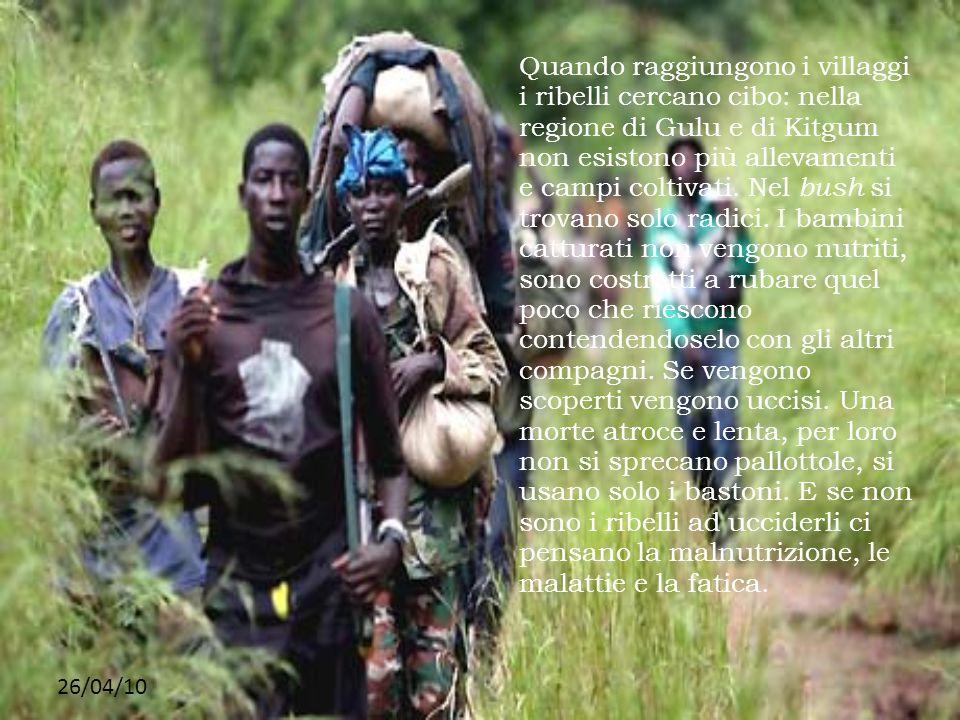 26/04/10 Quando raggiungono i villaggi i ribelli cercano cibo: nella regione di Gulu e di Kitgum non esistono più allevamenti e campi coltivati. Nel b