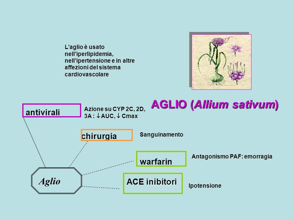 AGLIO (Allium sativum) Laglio è usato nelliperlipidemia, nellipertensione e in altre affezioni del sistema cardiovascolare Aglio warfarin Antagonismo