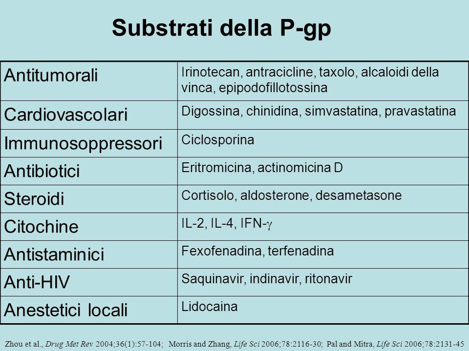 Antitumorali Irinotecan, antracicline, taxolo, alcaloidi della vinca, epipodofillotossina Cardiovascolari Digossina, chinidina, simvastatina, pravasta