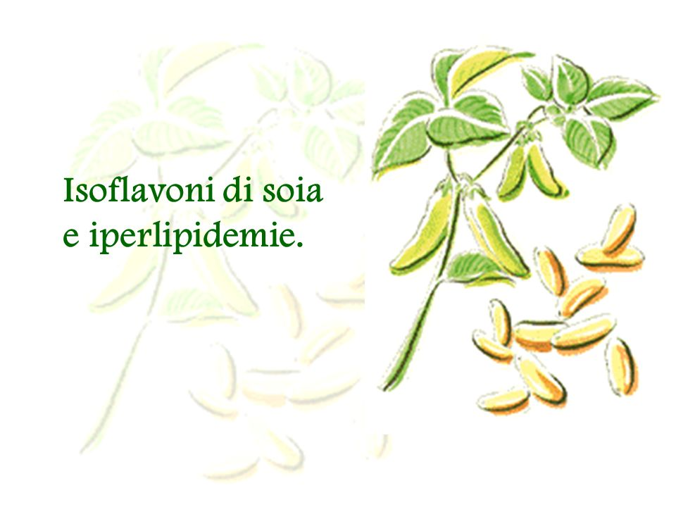 Isoflavoni di soia e iperlipidemie.