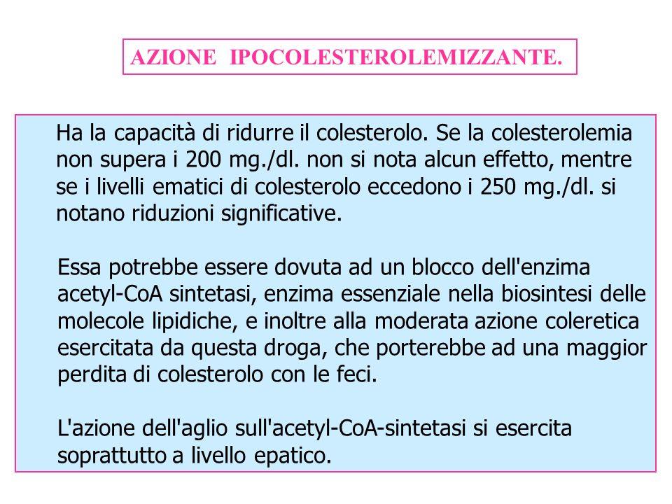 AZIONE IPOCOLESTEROLEMIZZANTE. Ha la capacità di ridurre il colesterolo. Se la colesterolemia non supera i 200 mg./dl. non si nota alcun effetto, ment