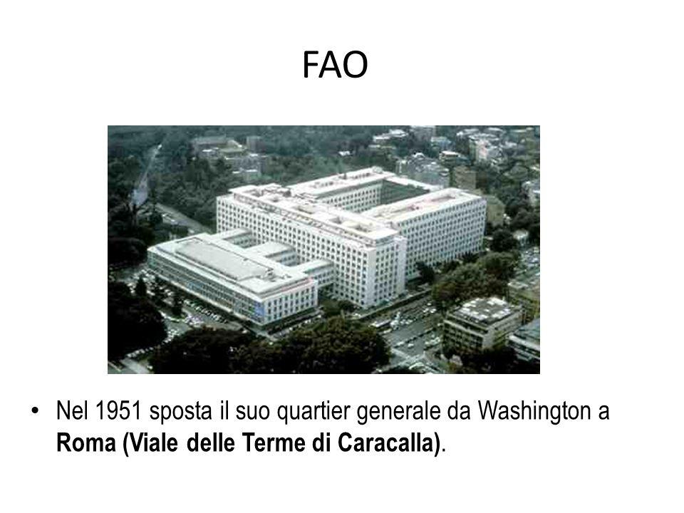 FAO Nel 1951 sposta il suo quartier generale da Washington a Roma (Viale delle Terme di Caracalla).