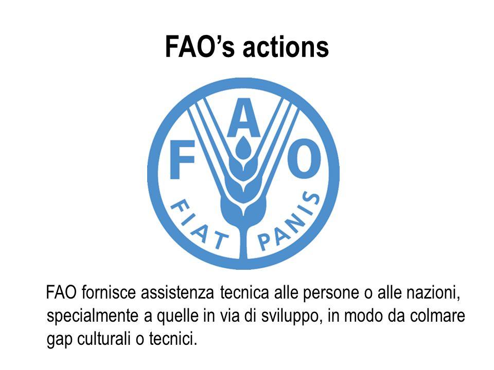 FAOs actions FAO fornisce assistenza tecnica alle persone o alle nazioni, specialmente a quelle in via di sviluppo, in modo da colmare gap culturali o tecnici.