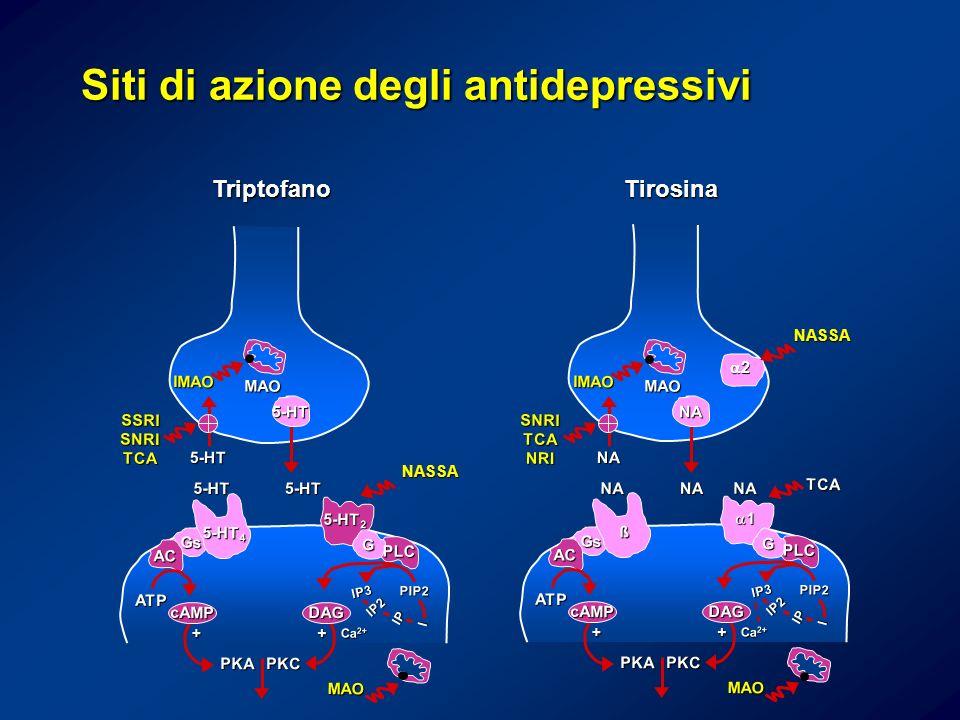 Triptofano 5-HT 5-HT5-HT SSRISNRITCA IMAO MAO PKCPKA ATP PIP2 cAMPDAG MAO ++ Ca 2+ 5-HT 2 G PLC 5-HT 4 Gs AC IP2 IP3 IP I 5-HT NASSA Tirosina NA NANA