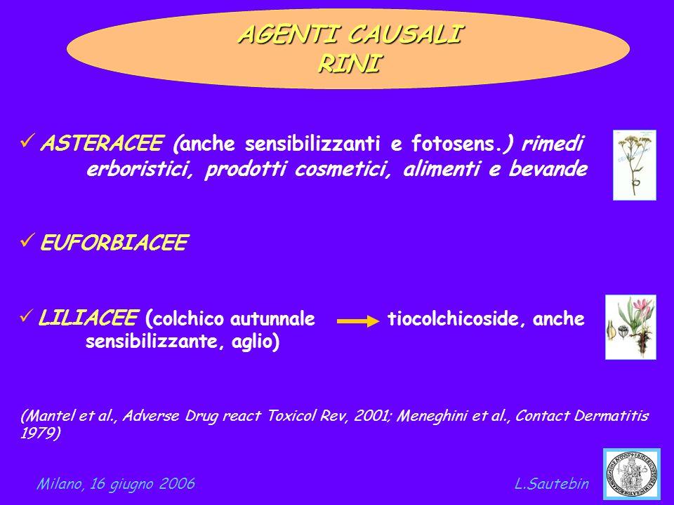 AGENTI CAUSALI RINI ASTERACEE (anche sensibilizzanti e fotosens.) rimedi erboristici, prodotti cosmetici, alimenti e bevande EUFORBIACEE LILIACEE ( co
