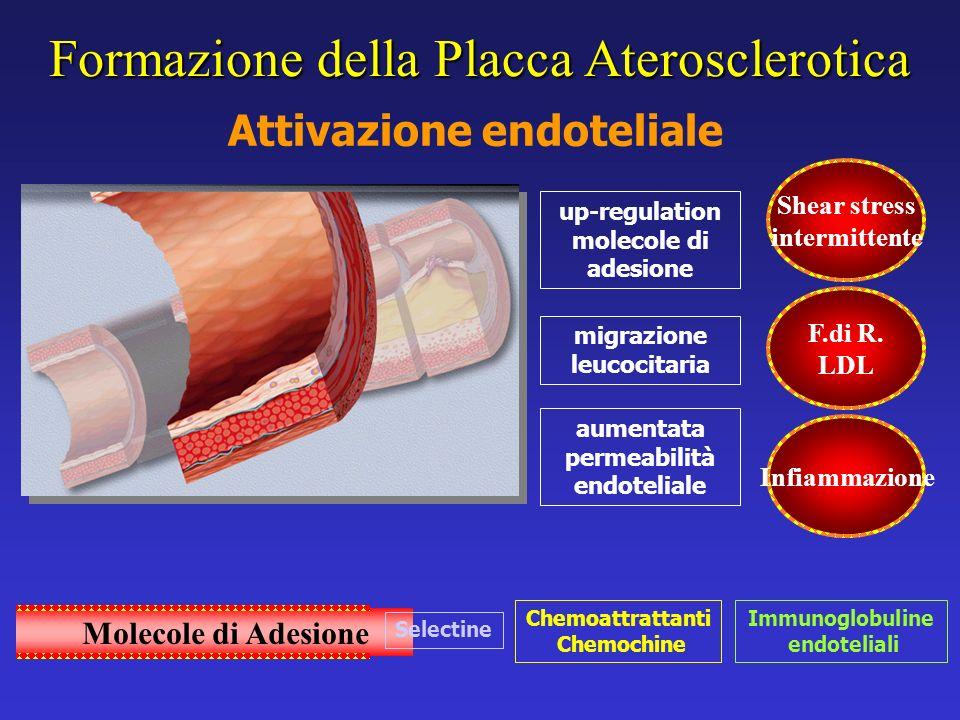 Formazione della Placca Aterosclerotica Attivazione endoteliale up-regulation molecole di adesione migrazione leucocitaria aumentata permeabilità endo