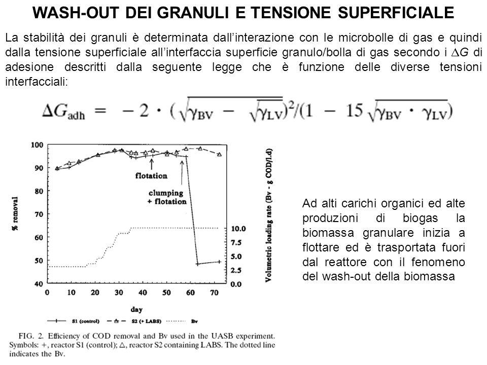 WASH-OUT DEI GRANULI E TENSIONE SUPERFICIALE La stabilità dei granuli è determinata dallinterazione con le microbolle di gas e quindi dalla tensione s