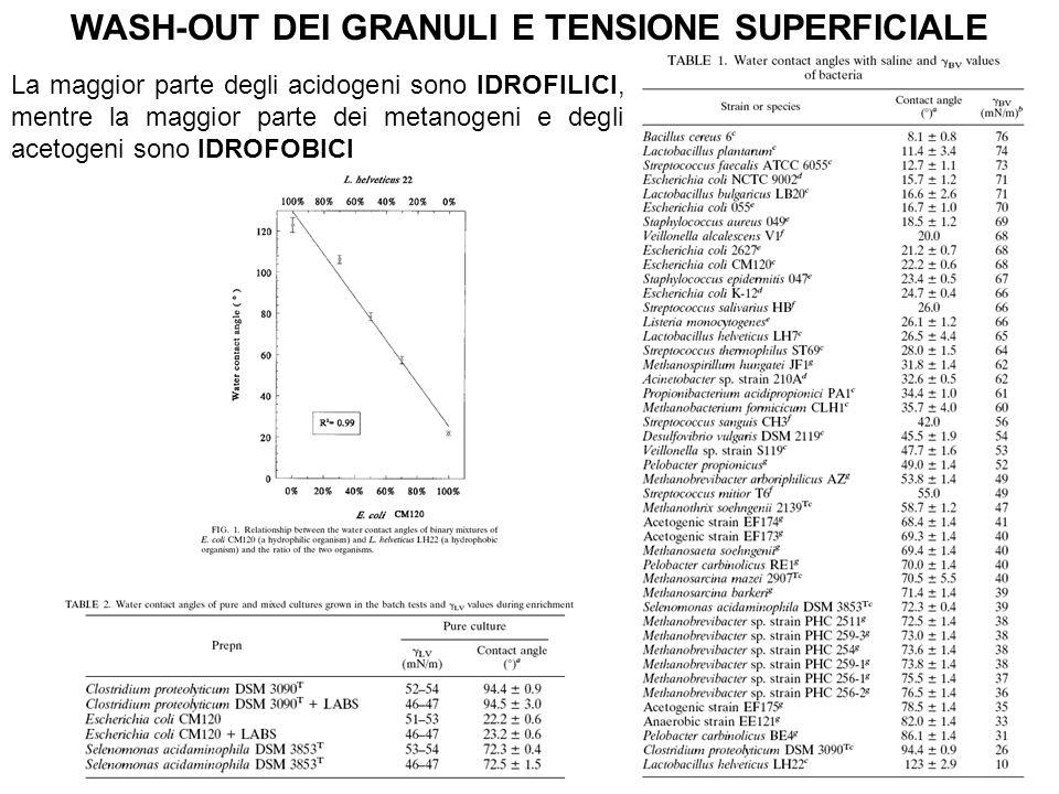 WASH-OUT DEI GRANULI E TENSIONE SUPERFICIALE La maggior parte degli acidogeni sono IDROFILICI, mentre la maggior parte dei metanogeni e degli acetogen