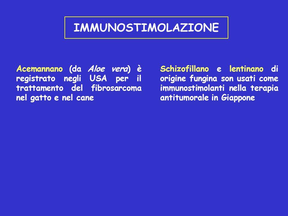 IMMUNOSTIMOLAZIONE Acemannano (da Aloe vera) è registrato negli USA per il trattamento del fibrosarcoma nel gatto e nel cane Schizofillano e lentinano