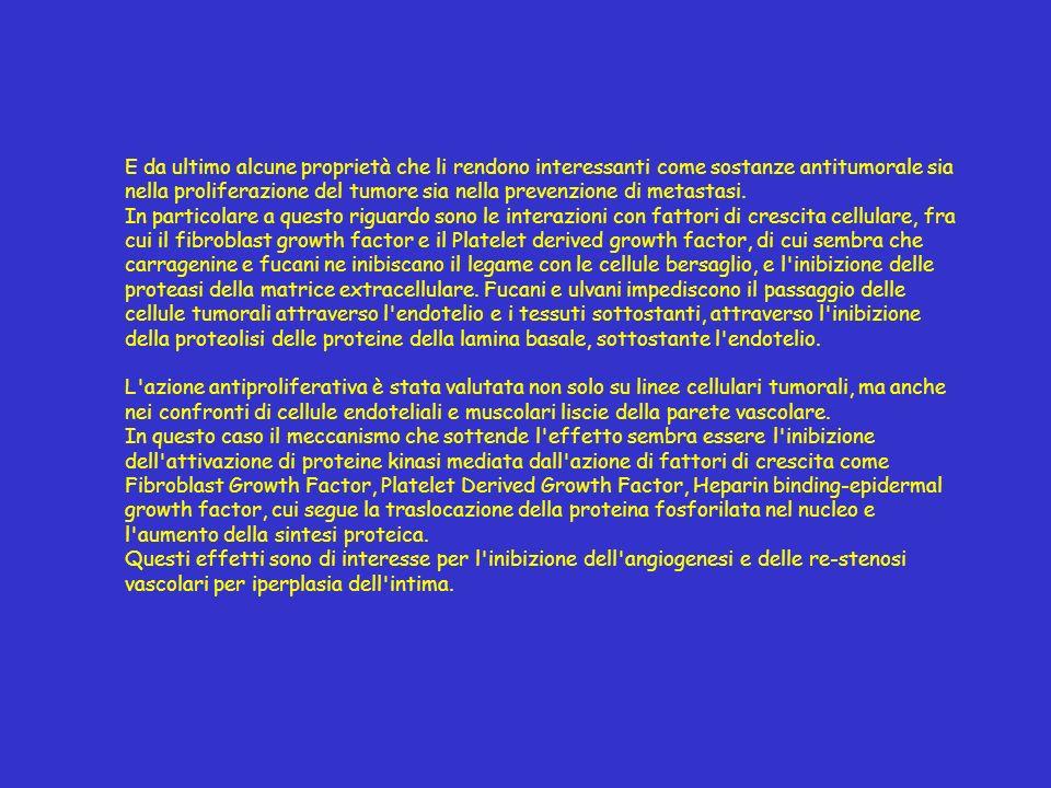 E da ultimo alcune proprietà che li rendono interessanti come sostanze antitumorale sia nella proliferazione del tumore sia nella prevenzione di metas