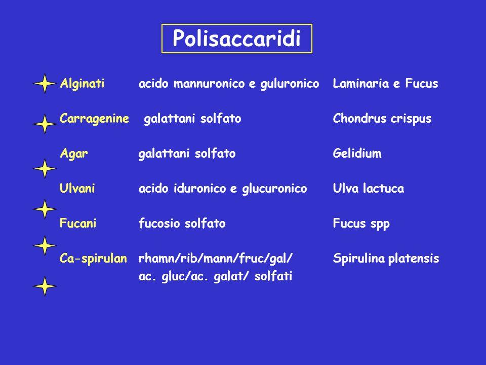 Polisaccaridi Alginati acido mannuronico e guluronicoLaminaria e Fucus Carragenine galattani solfato Chondrus crispus Agargalattani solfatoGelidium Ul