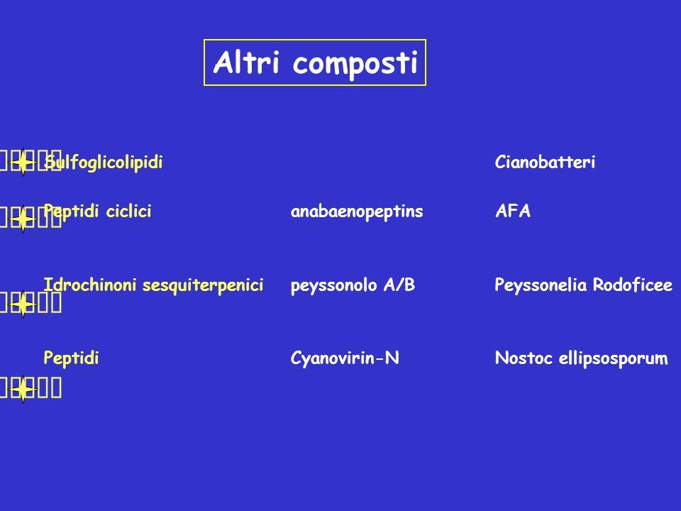 Altri composti SulfoglicolipidiCianobatteri Peptidi ciclicianabaenopeptinsAFA Idrochinoni sesquiterpenicipeyssonolo A/BPeyssonelia Rodoficee PeptidiCy