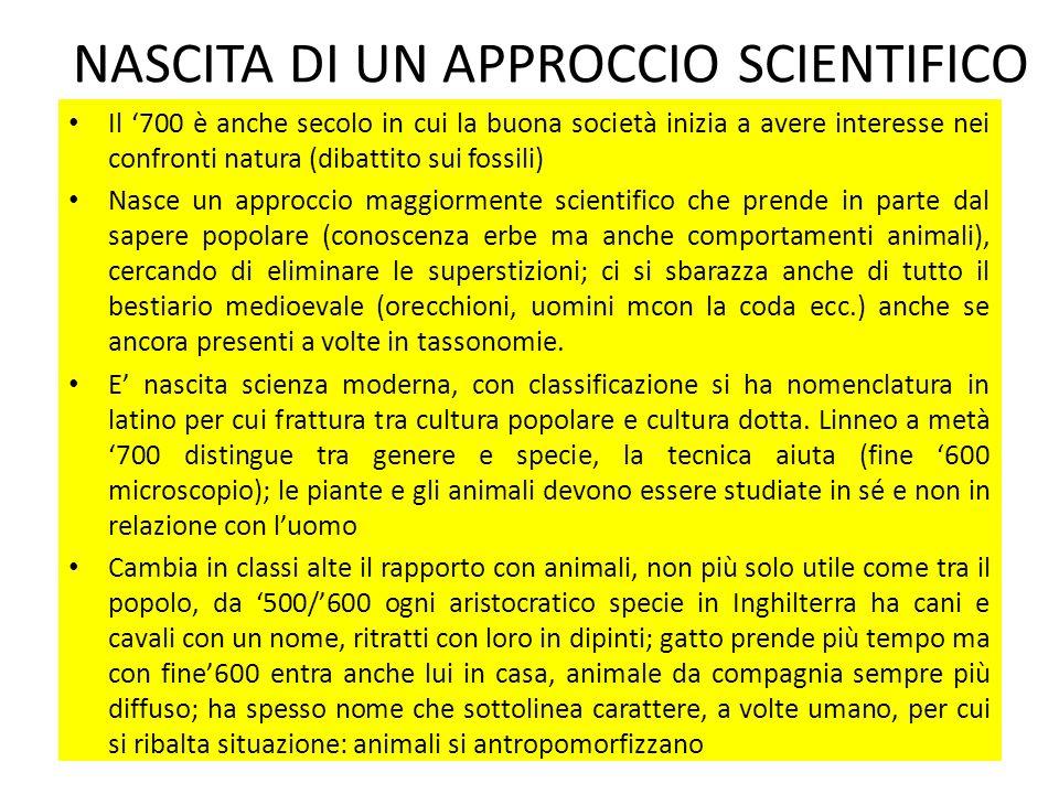 NASCITA DI UN APPROCCIO SCIENTIFICO Il 700 è anche secolo in cui la buona società inizia a avere interesse nei confronti natura (dibattito sui fossili