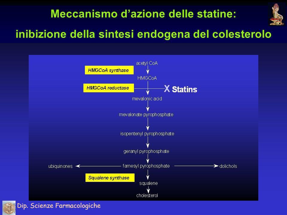 Meccanismo dazione delle statine: induzione dei recettori epatici per le LDL Dip.