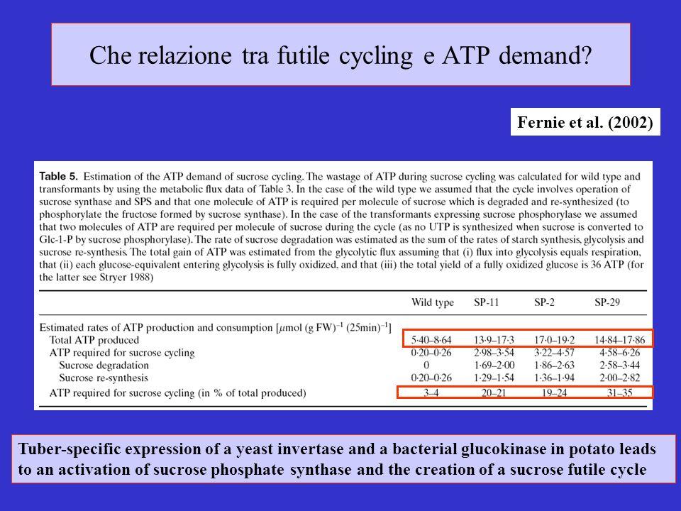 Che relazione tra futile cycling e ATP demand.