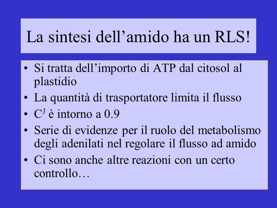 La sintesi dellamido ha un RLS! Si tratta dellimporto di ATP dal citosol al plastidio La quantità di trasportatore limita il flusso C J è intorno a 0.
