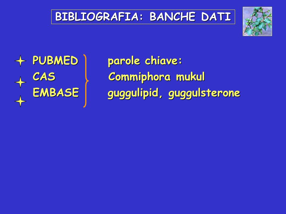BIBLIOGRAFIA: BANCHE DATI PUBMEDparole chiave: PUBMEDparole chiave: CAS Commiphora mukul CAS Commiphora mukul EMBASEguggulipid, guggulsterone EMBASEgu