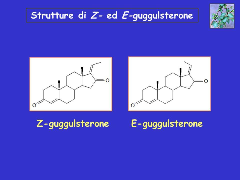 Guggulsterone: cinetica Nel plasma Z-Gs è convertito nella forma cis C max 1 g/ml dopo una dose orale di 50mg/kg di Z-Gs nel ratto Biodisponibilità: 43% T 1/2 di eliminazione: 4,5 hr per Z-Gs; 3,6 hr per E-Gs Metaboliti .