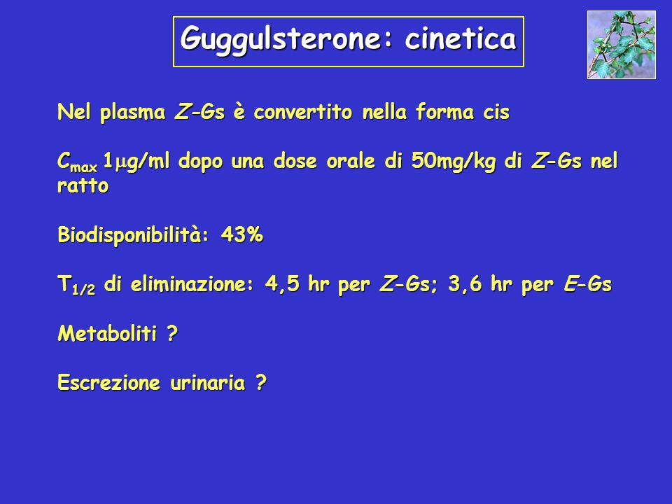 Guggulsterone: cinetica Nel plasma Z-Gs è convertito nella forma cis C max 1 g/ml dopo una dose orale di 50mg/kg di Z-Gs nel ratto Biodisponibilità: 4