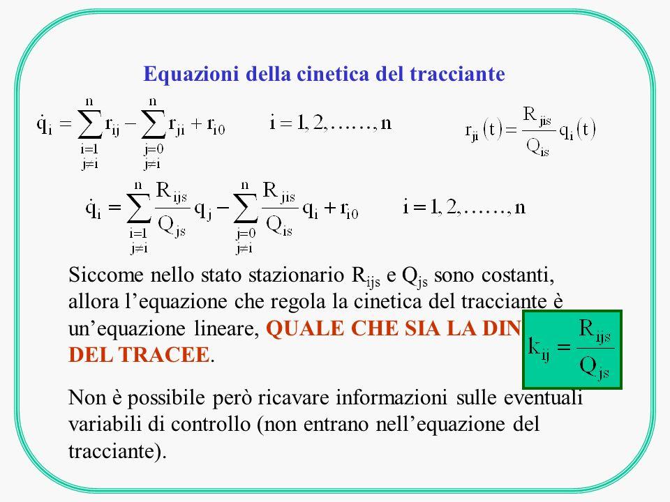 Equazioni della cinetica del tracciante Siccome nello stato stazionario R ijs e Q js sono costanti, allora lequazione che regola la cinetica del tracciante è unequazione lineare, QUALE CHE SIA LA DINAMICA DEL TRACEE.
