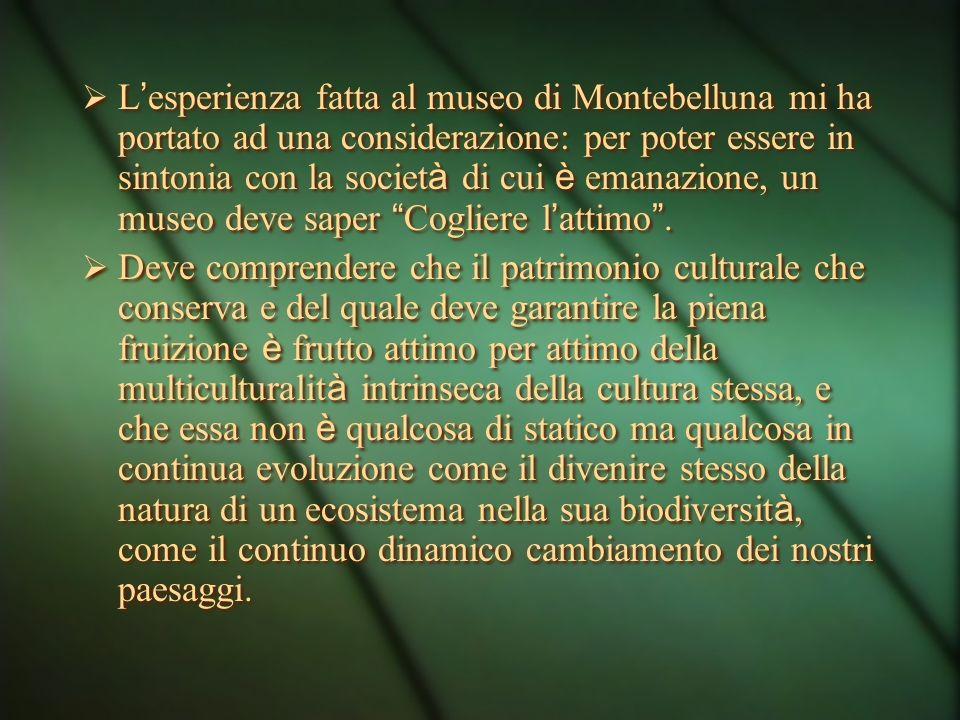 In Italia il museo non può essere inteso come universo chiuso, come astronave della storia. Qui da noi il museo esce da i suoi confini, dilaga nelle p