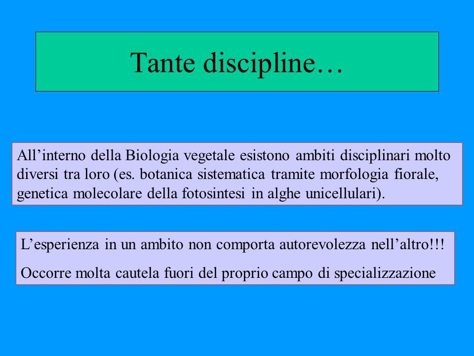 Tante discipline… Allinterno della Biologia vegetale esistono ambiti disciplinari molto diversi tra loro (es. botanica sistematica tramite morfologia