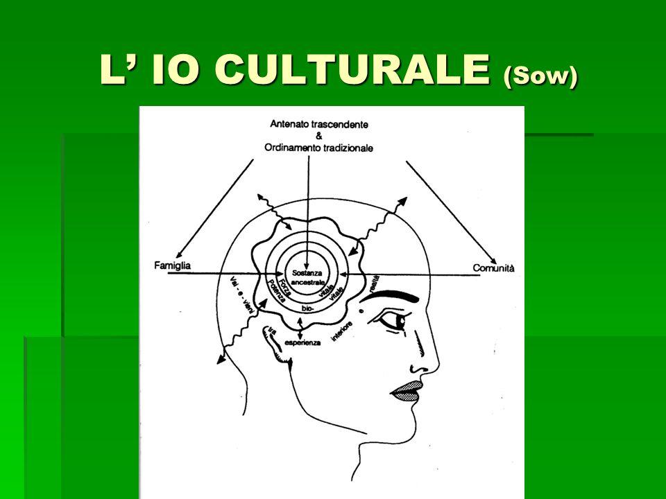 L IO CULTURALE (Sow)