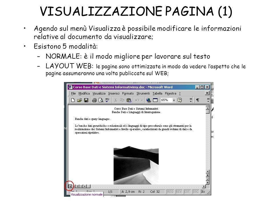 VISUALIZZAZIONE PAGINA (1) Agendo sul menù Visualizza è possibile modificare le informazioni relative al documento da visualizzare; Esistono 5 modalit