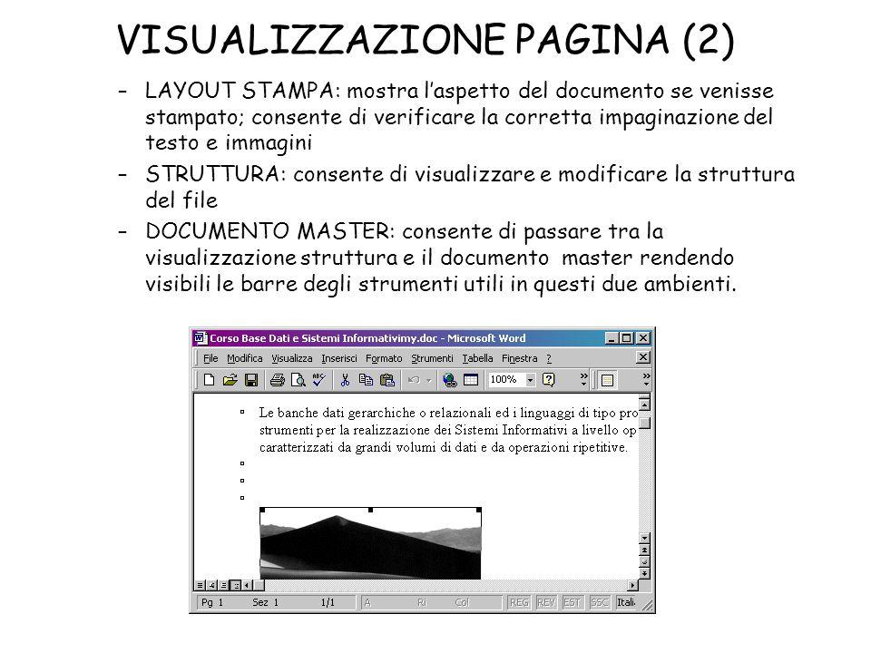 VISUALIZZAZIONE PAGINA (2) –LAYOUT STAMPA: mostra laspetto del documento se venisse stampato; consente di verificare la corretta impaginazione del tes