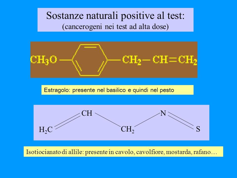 Isotiocianato di allile: presente in cavolo, cavolfiore, mostarda, rafano… Estragolo: presente nel basilico e quindi nel pesto H2CH2C CH CH 2 N S Sost
