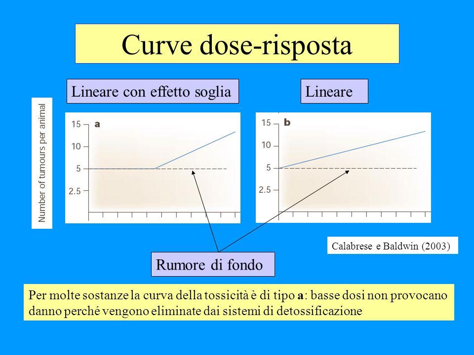 Curve dose-risposta Calabrese e Baldwin (2003) Lineare con effetto sogliaLineare Rumore di fondo Per molte sostanze la curva della tossicità è di tipo