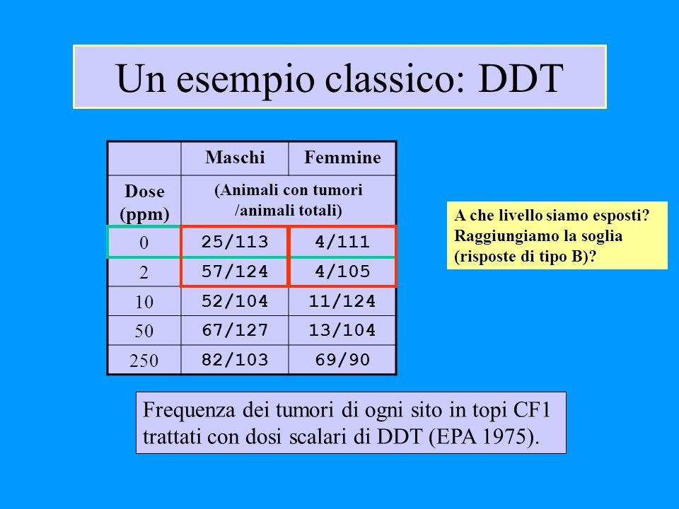 Un esempio classico: DDT MaschiFemmine Dose (ppm) (Animali con tumori /animali totali) 0 25/1134/111 2 57/1244/105 10 52/10411/124 50 67/12713/104 250