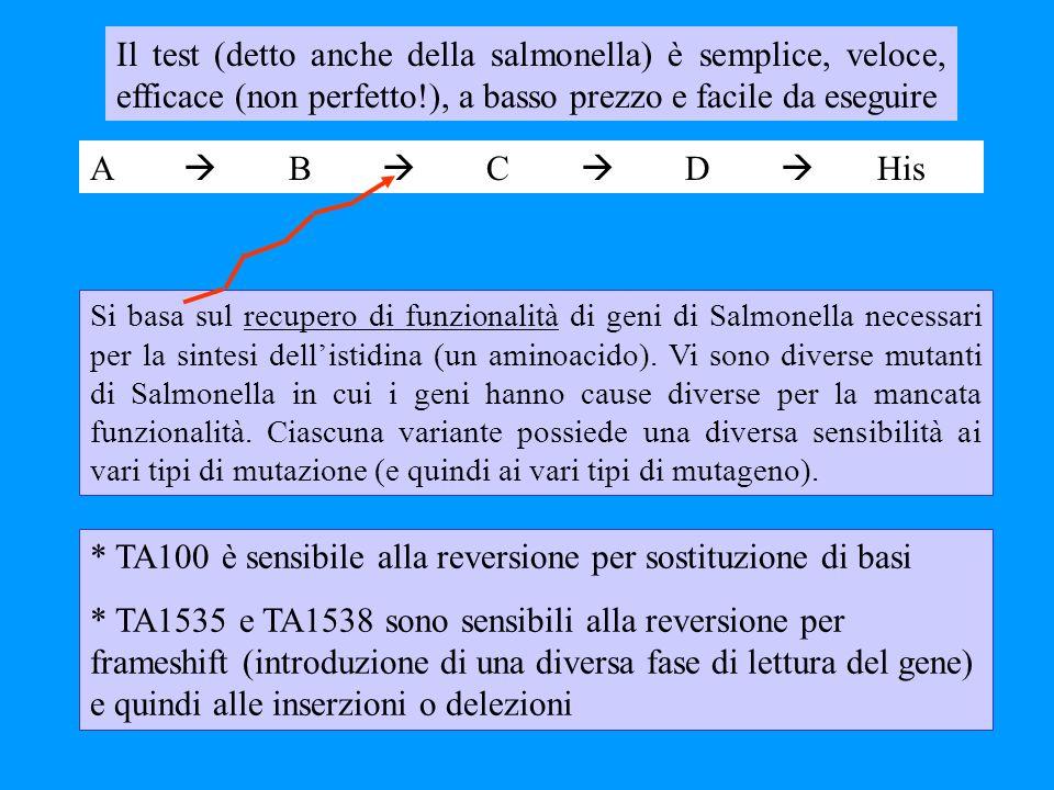 Il test (detto anche della salmonella) è semplice, veloce, efficace (non perfetto!), a basso prezzo e facile da eseguire * TA100 è sensibile alla reve