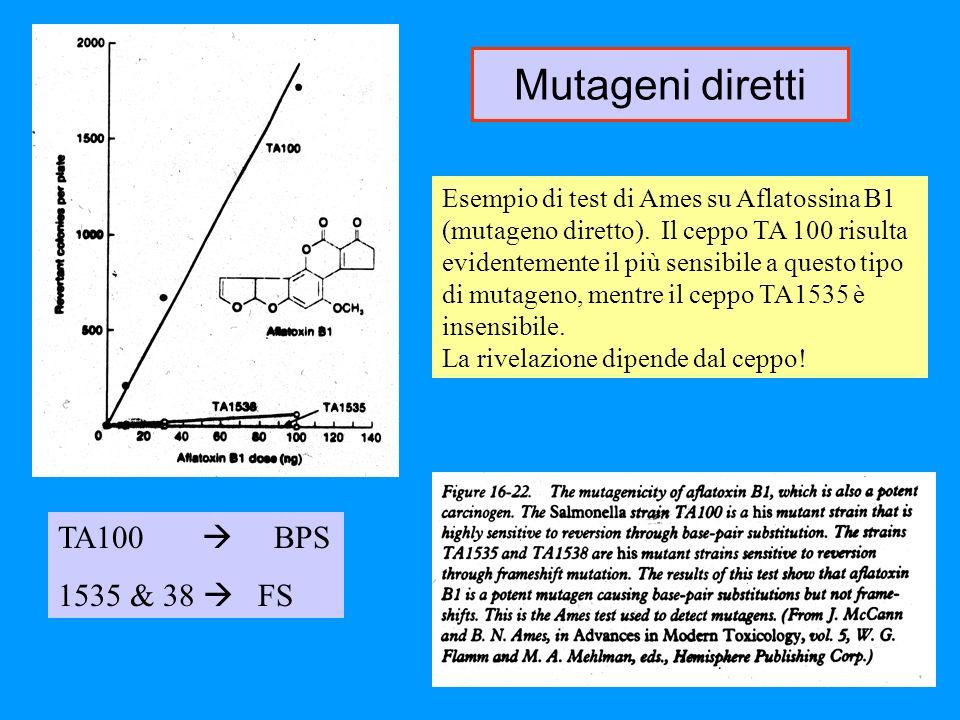 Esempio di test di Ames su Aflatossina B1 (mutageno diretto). Il ceppo TA 100 risulta evidentemente il più sensibile a questo tipo di mutageno, mentre