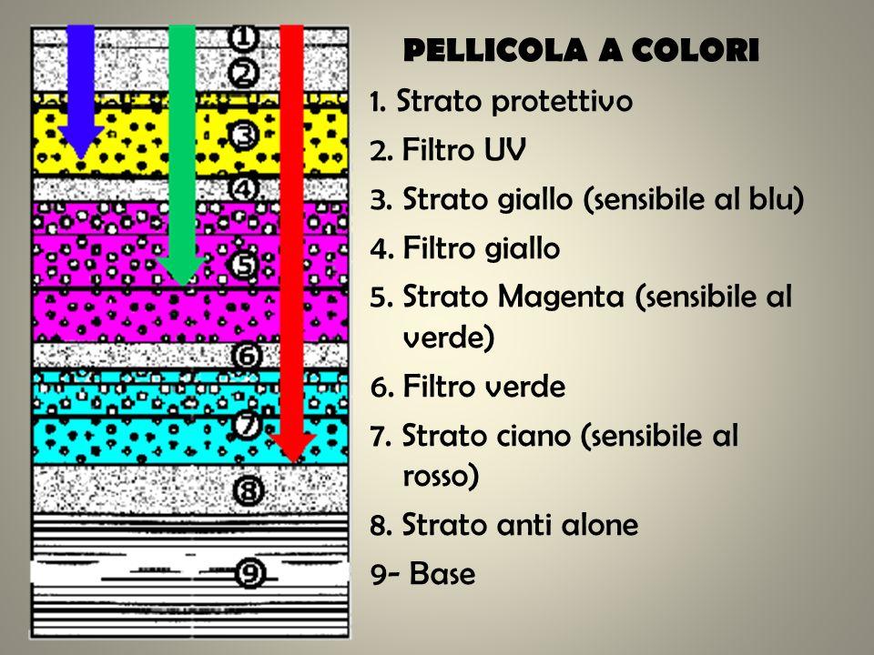 PELLICOLA A COLORI 1. Strato protettivo 2. Filtro UV 3. Strato giallo (sensibile al blu) 4. Filtro giallo 5. Strato Magenta (sensibile al verde) 6. Fi