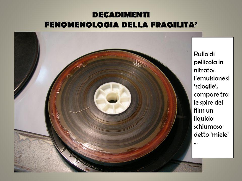 DECADIMENTI FENOMENOLOGIA DELLA FRAGILITA Rullo di pellicola in nitrato: lemulsione si scioglie, compare tra le spire del film un liquido schiumoso de