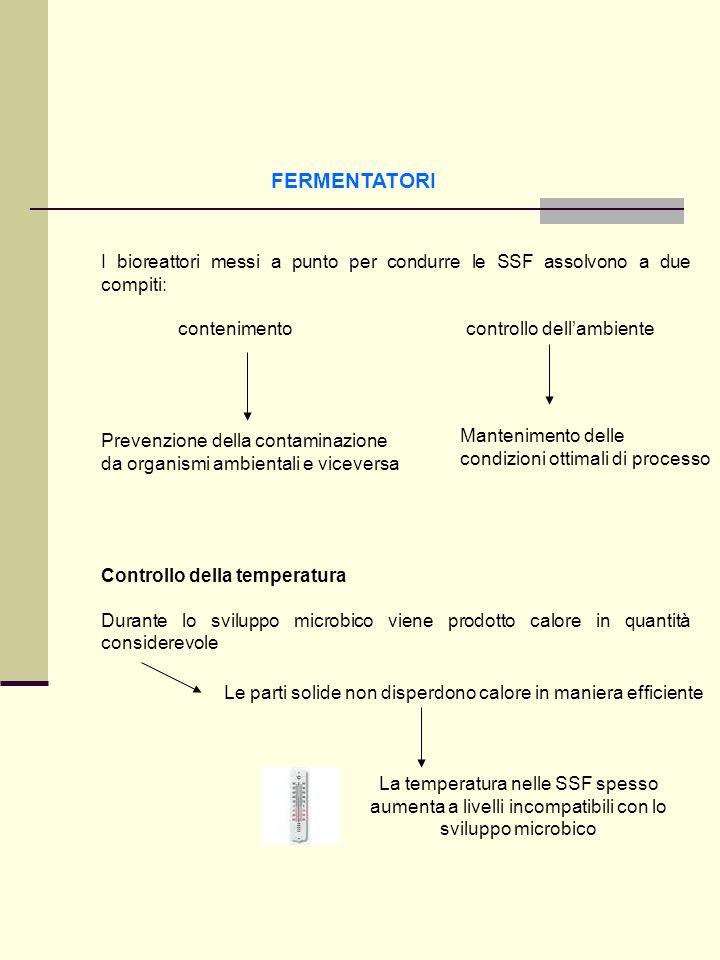 FERMENTATORI I bioreattori messi a punto per condurre le SSF assolvono a due compiti: contenimentocontrollo dellambiente Prevenzione della contaminazi