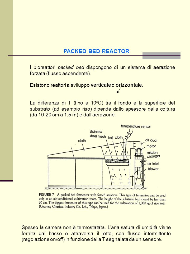 PACKED BED REACTOR I bioreattori packed bed dispongono di un sistema di aerazione forzata (flusso ascendente). Esistono reattori a sviluppo verticale