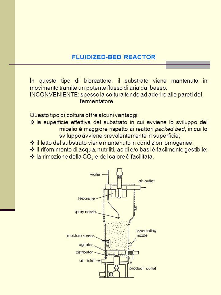 FLUIDIZED-BED REACTOR In questo tipo di bioreattore, il substrato viene mantenuto in movimento tramite un potente flusso di aria dal basso. INCONVENIE