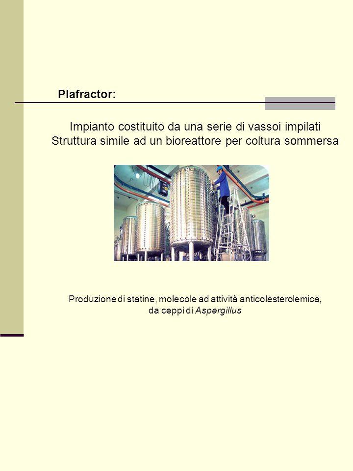 Plafractor: Impianto costituito da una serie di vassoi impilati Struttura simile ad un bioreattore per coltura sommersa Produzione di statine, molecol