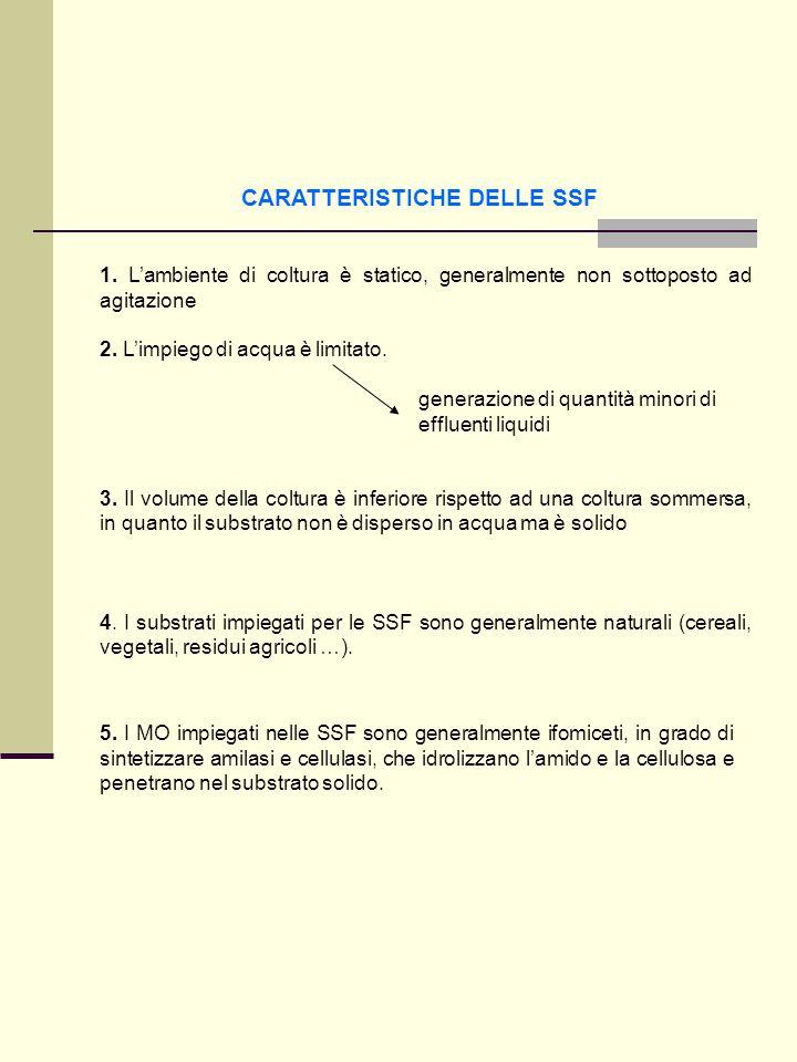 CARATTERISTICHE DELLE SSF 1. Lambiente di coltura è statico, generalmente non sottoposto ad agitazione 2. Limpiego di acqua è limitato. generazione di