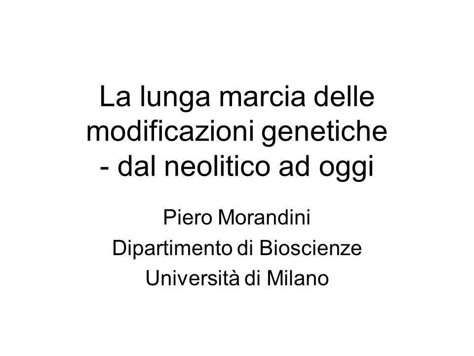 La lunga marcia delle modificazioni genetiche - dal neolitico ad oggi Piero Morandini Dipartimento di Bioscienze Università di Milano