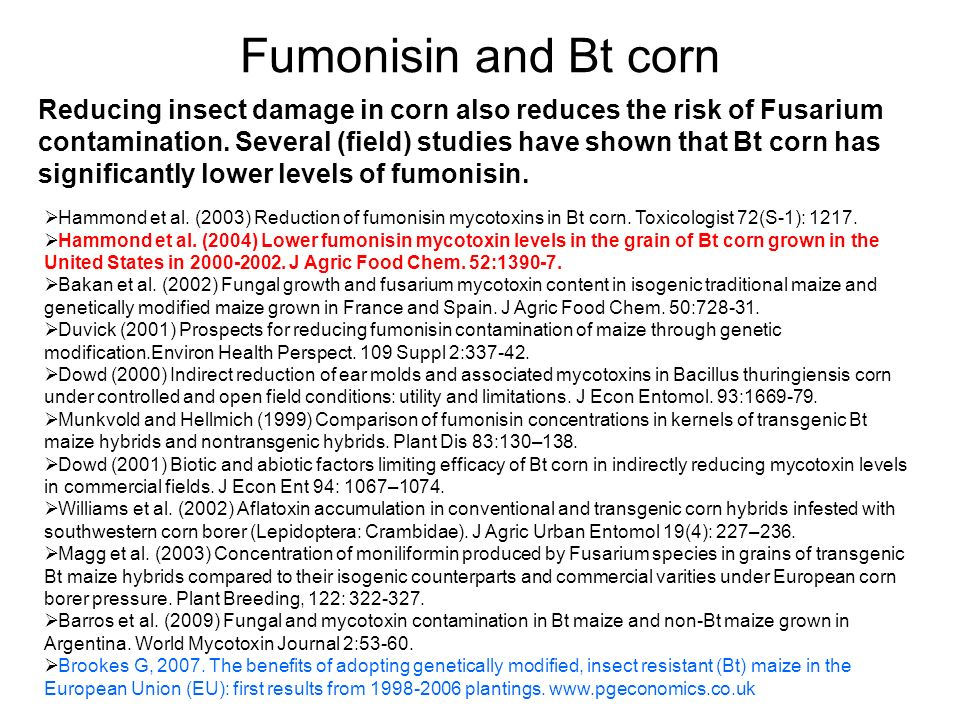 Fumonisin and Bt corn Reducing insect damage in corn also reduces the risk of Fusarium contamination. Several (field) studies have shown that Bt corn