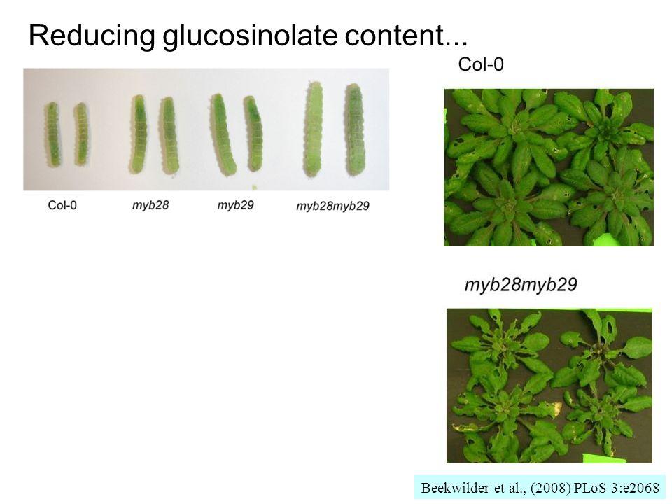 Reducing glucosinolate content......stimulates pest growth and damage! Beekwilder et al., (2008) PLoS 3:e2068