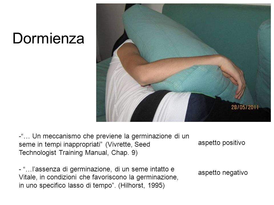 Dormienza -… Un meccanismo che previene la germinazione di un seme in tempi inappropriati (Vivrette, Seed Technologist Training Manual, Chap. 9) - …la