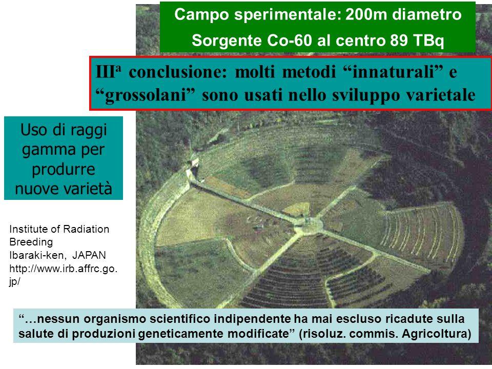 Institute of Radiation Breeding Ibaraki-ken, JAPAN http://www.irb.affrc.go. jp/ Campo sperimentale: 200m diametro Sorgente Co-60 al centro 89 TBq Uso